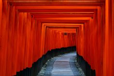 a tunnel of red gates stretching over 4km up the mountains near Kyoto; the path is associated with various temples // p by Clarissa Capitoni