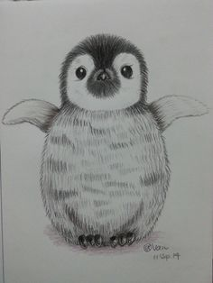 Cartoon Penguin. I saw the most small Penguin in Australia Phillip Island. They are really cute and small. I love the way of people to protect them. We need to share the land with animal. We not the only one to have right to live in the world.