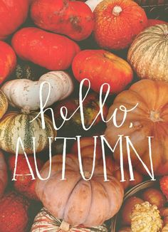 SOON, I can't wait for our 2 weeks of autumn!!!