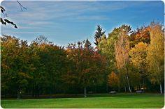 Herbstlandschaft.... www.facebook.com/... #EssenReisenLeben #Herbst #Autunno #Autumn