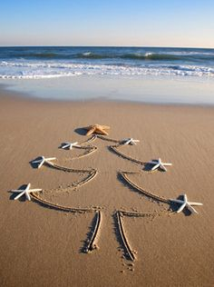 Emanuela Rizzo - Google+ A different Christmas - An Aussie Christmas!