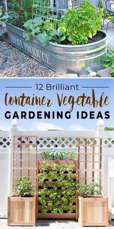30526 Best Diy Gardening Ideas Images In 2020 Garden