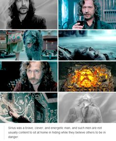 sirius black - harry potter
