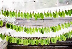 seating chart with escort cards printed on leaves