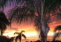 Englewood Florida.