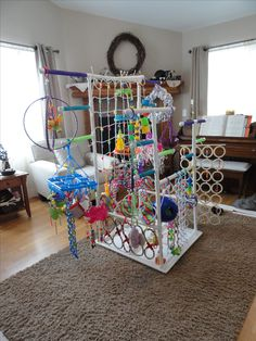 Bird play gym!  So fun for a special enrichment day.  The frame could be taken apart for storage and even resued woth
