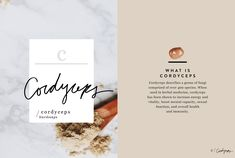 Wellness Encyclopedia — Cordyceps – Free People Blog | Free People Blog #freepeople