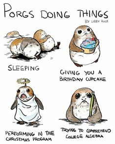 Porgs are so cute and when I saw this I laughed so hard. - Star Wars Funny - Funny Star Wars Meme - - Porgs are so cute and when I saw this I laughed so hard. The post Porgs are so cute and when I saw this I laughed so hard. appeared first on Gag Dad. Star Wars Rebels, Star Wars Bb8, Star Wars Meme, Star Wars Film, Funny Star Wars, Starwars, Heros Disney, Recent Movies, Love Stars