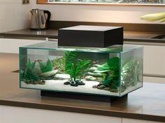 Fluval EDGE Aquarium & Accessories, Full Aquarium Set-Up for Sale Online   PetSolutions
