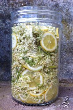 Liquore di fiori di sambuco 06