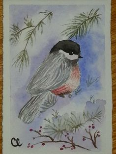 Winter Chickadee Blank Card Watercolor Card by ColorsAndChords