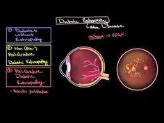 prednisone alcohol interaction