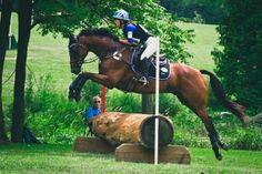 """VR guest blogger Ashley Harvey of HD Eventing has brought us a wonderful post, """"Eventing Through The Alphabet."""" She talks about how our plans as equestrians doesn't always happen accordingly, and how she has been dealing with this. Great read! Check it out at http://www.velvetrider.com/?p=3810"""