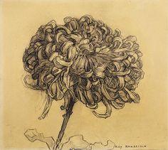 Piet Mondrian Chrysanthemum, 1908–09. Charcoal on paper, 10 x 11 1/4 inches (25.4 x 28.7 cm). Solomon R. Guggenheim Museum, New York 61.1589. © 2007 Mondrian/Holtzman Trust
