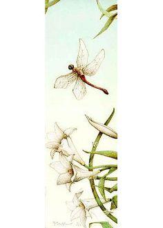 Michael Parkes - dragonfly