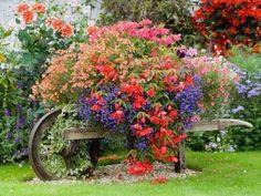 Beautiful Old Wooden Wheelbarrow Garden
