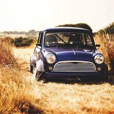 Classic Minis : Photo Mini Cooper Classic, Classic Mini, Classic Cars, Mini Cooper Accessories, Mini Morris, Mini Lifestyle, Mini Copper, John Cooper Works, Morris Minor