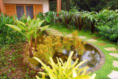 Residência SA - Ilhabela, SP : Jardins tropicais por Gil Fialho Paisagismo