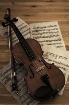 ♫ ♪ ♫ ♫ ♪ ♫ ♪ ♪ ♫ ♪ ♫ ♪ ♫ ♪ ♫ ♪ ♪ ♫ #violinlessons #learnviolin