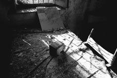 RAMÓN GRAU. Director of Photography: Se nos cae la casa . Granada 2015