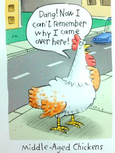 Why did the chicken cross the road? Chicken Jokes, Cartoon Chicken, Puns Jokes, The Golden Years, Animal Crackers, Good Humor, Funny Cards, Funny Cartoons, Getting Old