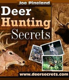 7 The Best Hunts for the Lowest Prices !! images | Hunts