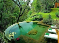 http://www.100placestovisit.com/kerala-waterfalls-india-asia/  Kerala, India  #kerala #India #bucketlist @100places2visit