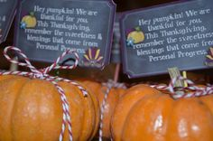 Daylights: Thanksgiving Personal Progress Gift