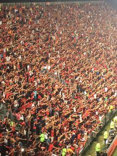 Isso aqui é Flamengo!!!!!!!