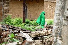 la menace islamiste plane sur le nord du pays — La Libre Afrique