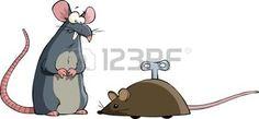 Deux souris sur un fond blanc, vecteur