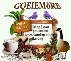 Goeie more Good Morning Wishes, Good Morning Quotes, Lekker Dag, Goeie Nag, Goeie More, Afrikaans Quotes, Special Quotes, Gluten Free Recipes, Qoutes