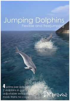 jumping dolphins by :: 2Xtreme :: Always jump different, a real spectacle