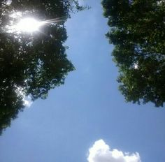 Sol de meio dia