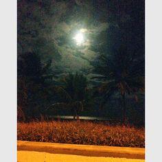 Orla a Noite