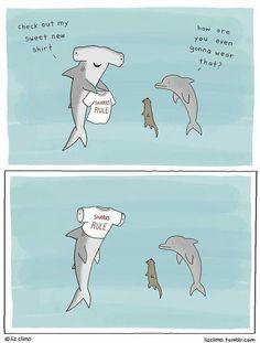 Sharks rule!