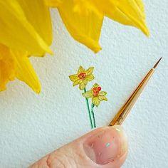После др я любуюсь на прекрасные нарциссы. Спасибо @morozzza Поэтому.. День 3 - #нарцисс // Day 3 of #TinyPiecesOfLife  #Daffodils // #daffodil #art #painting #watercolor #narcissus #flowers #акварель #рисунок #миниатюра #miniature #minimalism #flower #botanicalart