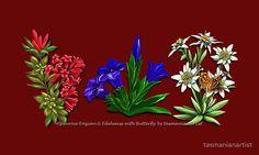 Although not 'folkart', the classic trio nevertheless belongs among my folkart motifs. ~ FLORAL ~ Alpenrose Enzian & Edelweiss with Butterfly by tasmanianartist