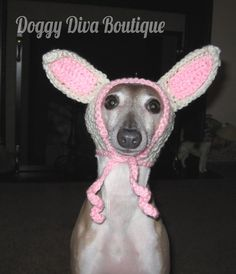 Sweaters For Greyhounds | doggy diva boutique, italian greyhound hat, funny, cute, knit, crochet ...