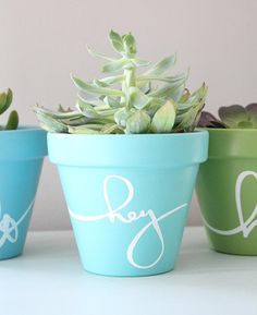 Learn how to paint terra cotta pots from cleaning your terra cotta pot to protected your final product, this terra cotta pot crafts tutorial has everything you need to know!