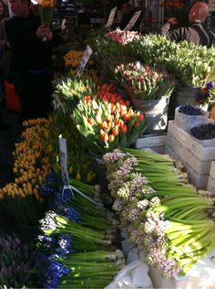 PapillonPois- flower mart