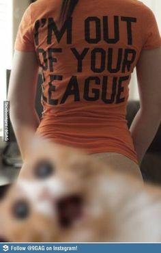 epic cat photobomb!!