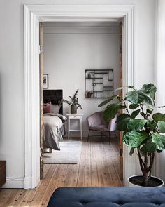 [New] The 10 Best Home Decor Today (with Pictures) Living Room Interior, Home Interior, Interior Design, Scandi Home, Scandinavian Home, Plant Decor, Decoration, My Room, Interior Inspiration