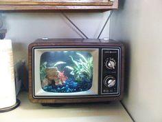 Cute little table top version of the fish tank tv aquarium / tank! - @jantzie #AquariumTanksIdeas
