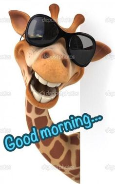 good morning quotes funny \ good morning quotes _ good morning _ good morning quotes for him _ good morning quotes inspirational _ good morning wishes _ good morning beautiful _ good morning quotes funny _ good morning greetings Funny Good Morning Messages, Good Morning Funny Pictures, Really Funny Pictures, Good Morning Picture, Good Morning Good Night, Morning Pics, Good Morning Sayings, Morning Images, Good Night Funny