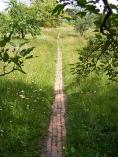 Follow the red brick path through the wild flower meadow at Great Dixter