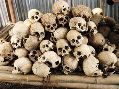 dry goat skull - Pesquisa Google