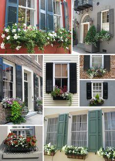 Many window box ideas!