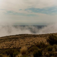 it was foggy at the top of Mt Thomas track in Canterbury New Zealand. Thie is a short half day walk in Canterbury Canterbury New Zealand, Adventure Photography, Niagara Falls, Track, Country Roads, Photo And Video, Top, Instagram, Runway