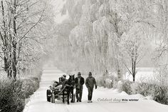 Some other winter. Romania, Holiday Crafts, Snow, Winter, Outdoor, Decor, Winter Time, Outdoors, Decoration